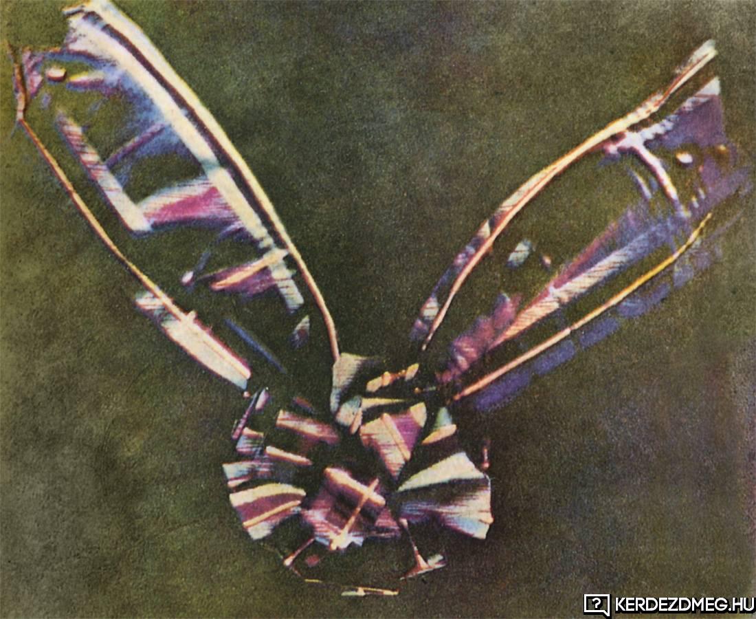 Tudtad, hogy az első színes fotón egy szalag, ez a szalag szerepelt?
