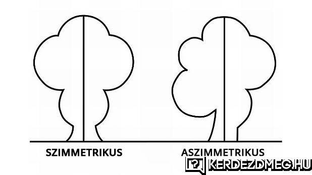 Egy szuper ábra, hogy mi a szimmetrikus és az aszimmetrikus.