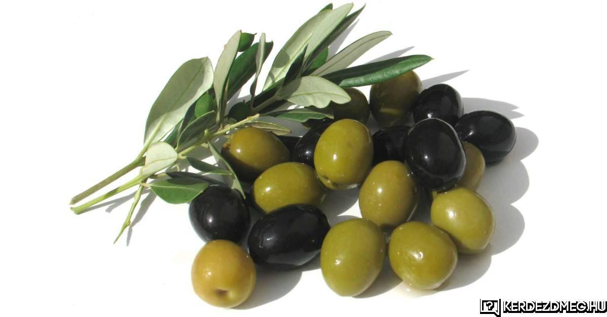 A mediterrán konyha nélkülözhetetlen eleme az olivabogyó.